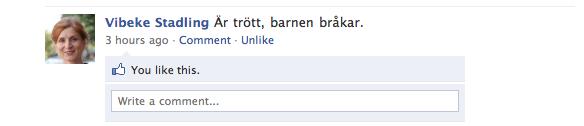Vibeke på FB